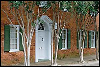 Rows of trees and Texada house. Natchez, Mississippi, USA ( color)