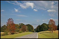 Road in meadow. Natchez Trace Parkway, Mississippi, USA ( color)