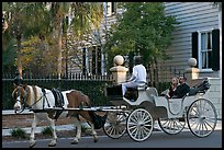 Couple on horse carriage tour of historic district. Charleston, South Carolina, USA ( color)
