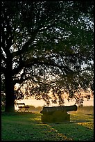 Cannon, bench, and oak tree, sunrise. Beaufort, South Carolina, USA ( color)