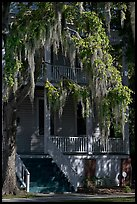 Spanish moss and balcony house. Beaufort, South Carolina, USA