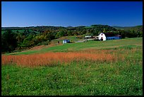 Meadow and barn. Virginia, USA (color)