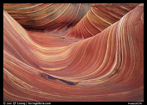 The Wave, North Coyote Buttes. Vermilion Cliffs National Monument, Arizona, USA