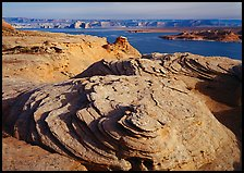 Sandstone Swirls and Lake Powell, Glenn Canyon National Recreation Area, morning. USA ( color)