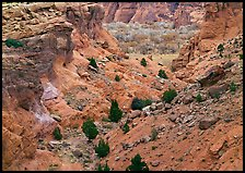 Red rocks, Canyon de Chelly, Junction Overlook. Canyon de Chelly  National Monument, Arizona, USA ( color)