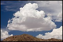 Cloud and ridge with saguaro cactus, Maricopa Mountains. Sonoran Desert National Monument, Arizona, USA ( color)