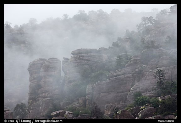 Fog and spires. Chiricahua National Monument, Arizona, USA (color)