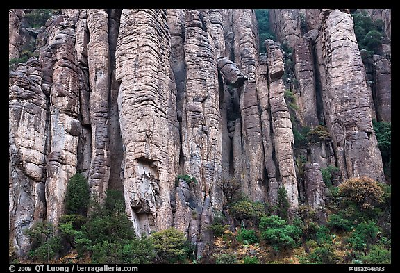Organ pipe volcanic rock formations. Chiricahua National Monument, Arizona, USA (color)