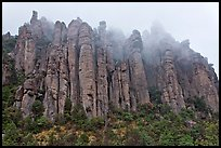 Stone columns. Chiricahua National Monument, Arizona, USA