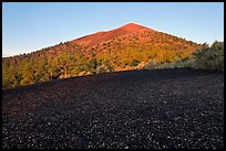 Cinder and Sunset Crater at sunrise, Sunset Crater Volcano National Monument. Arizona, USA