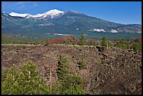 Lava fields and snow-capped San Francisco Peaks, Sunset Crater Volcano National Monument. Arizona, USA