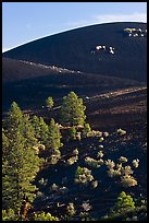 Cinder cone detail, Sunset Crater Volcano National Monument. Arizona, USA