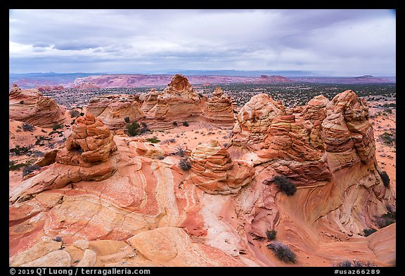 Cottonwood Cove, Coyote Buttes South. Vermilion Cliffs National Monument, Arizona, USA (color)