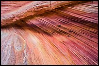 Striation details, Third Wave, Coyote Buttes South. Vermilion Cliffs National Monument, Arizona, USA ( color)