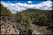 Forested volcanic peaks, Mt. Trumbull range. Parashant National Monument, Arizona, USA ( color)