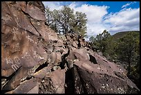 Nampaweap Petroglyphs. Parashant National Monument, Arizona, USA ( color)