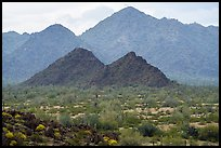 North Maricopa Mountains. Sonoran Desert National Monument, Arizona, USA ( color)