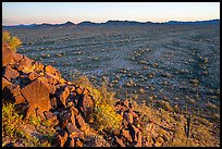 Vekol Valley from Lost Horse Peak at sunset. Sonoran Desert National Monument, Arizona, USA ( color)