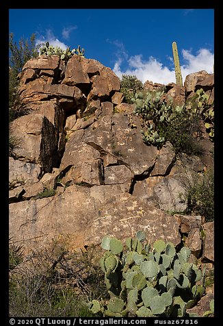 Rock art site, Badger Springs Canyon. Agua Fria National Monument, Arizona, USA (color)