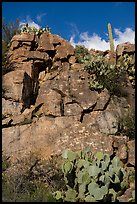 Rock art site, Badger Springs Canyon. Agua Fria National Monument, Arizona, USA ( color)