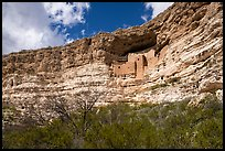 Sinagua cliff dwelling, Montezuma Castle National Monument. Arizona, USA ( color)