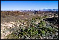 Aerial view of Pakoon Springs. Parashant National Monument, Arizona, USA ( )
