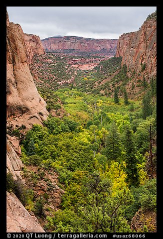 Betatakin Canyon in early autumn. Navajo National Monument, Arizona, USA (color)