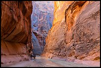 Group of backpackers in Paria Canyon. Vermilion Cliffs National Monument, Arizona, USA ( color)