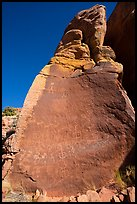 Boulder with Maze rock art. Vermilion Cliffs National Monument, Arizona, USA ( color)