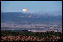 Full moon setting over Kinney Flat. Grand Canyon-Parashant National Monument, Arizona, USA ( color)