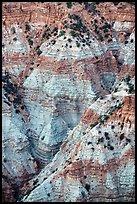 Colorful eroded rock in Hells Hole. Parashant National Monument, Arizona, USA ( )