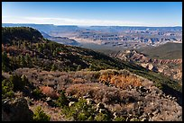 Mt Logan slopes, Grand Canyon, and Whitmore Canyon. Grand Canyon-Parashant National Monument, Arizona, USA ( color)