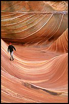 Hiker balances himself in the Wave. Vermilion Cliffs National Monument, Arizona, USA ( color)