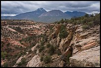 Sand Canyon. Canyon of the Anciens National Monument, Colorado, USA ( color)