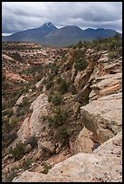 Sand Canyon and Sleeping Ute Mountain. Canyon of the Anciens National Monument, Colorado, USA ( color)