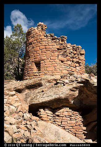Tower on rock outcropping. Canyon of the Anciens National Monument, Colorado, USA (color)