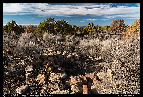 Ruined walls. Canyon of the Anciens National Monument, Colorado, USA (color)