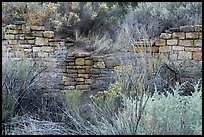 Partly excavated wall of Lower House. Yucca House National Monument, Colorado, USA ( color)