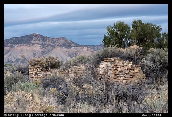 Lower House wall with Mesa Verde in background. Yucca House National Monument, Colorado, USA (color)