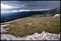 Snow and tundra on Mt Evans. Colorado, USA ( color)