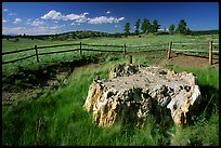 Petrified stump, Florissant Fossil Beds National Monument. Colorado, USA (color)