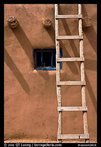 Ladder, Vigas, and blue window. Taos, New Mexico, USA (color)