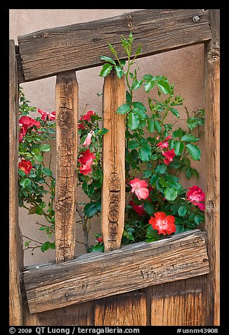 Roses and wooden doors, Sanctuario de Chimayo. New Mexico, USA