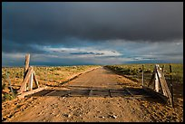 Cattle guard and unpaved road. New Mexico, USA ( color)