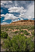 Canyon floor, cliffs, and clouds. Chaco Culture National Historic Park, New Mexico, USA ( color)
