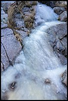 Frozen stream. Organ Mountains Desert Peaks National Monument, New Mexico, USA ( color)