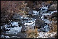 Stream in winter. Rio Grande Del Norte National Monument, New Mexico, USA ( )