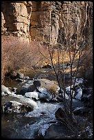 Rio Hondo and cliffs. Rio Grande Del Norte National Monument, New Mexico, USA ( )