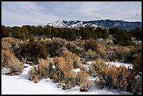 Cebolla Mesa and Sangre De Cristo Mountains in winter. Rio Grande Del Norte National Monument, New Mexico, USA ( )