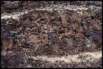 Volcanic rocks and cliffs near La Vista Verde. Rio Grande Del Norte National Monument, New Mexico, USA ( )